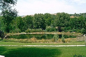 The pond in the public park of Saillagouse (summer 2003)